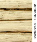 rows of oak log isolated... | Shutterstock . vector #1237908805