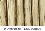 rows of oak log isolated... | Shutterstock . vector #1237908808