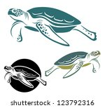 Sea Turtle   Vector Illustration