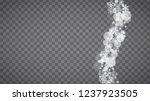 blizzard snowflakes on... | Shutterstock .eps vector #1237923505