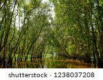waterway in tra su capujut... | Shutterstock . vector #1238037208