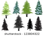 illustration with fir set...