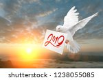dove carrying 2019 text in... | Shutterstock . vector #1238055085