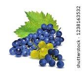 fresh  nutritious  tasty grapes.... | Shutterstock .eps vector #1238163532