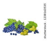 fresh  nutritious  tasty grapes.... | Shutterstock .eps vector #1238163535