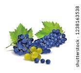 fresh  nutritious  tasty grapes.... | Shutterstock .eps vector #1238163538