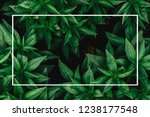 creative layout made of flowers ... | Shutterstock . vector #1238177548