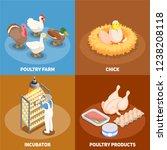 poultry 2x2 design concept set...   Shutterstock .eps vector #1238208118