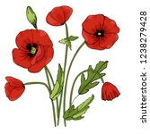 Doodle Red Poppies