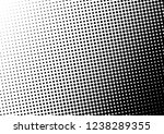 black and white dots background.... | Shutterstock .eps vector #1238289355