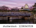 night view of himeji castle in... | Shutterstock . vector #1238365528