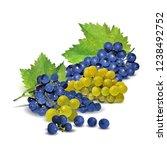 fresh  nutritious  tasty grapes.... | Shutterstock .eps vector #1238492752