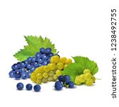 fresh  nutritious  tasty grapes.... | Shutterstock .eps vector #1238492755