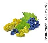 fresh  nutritious  tasty grapes.... | Shutterstock .eps vector #1238492758