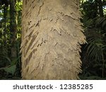 termites are a group of... | Shutterstock . vector #12385285