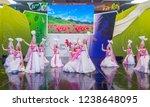 andong   south korea   oct 01   ... | Shutterstock . vector #1238648095