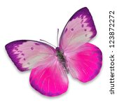 Stock photo pink butterfly isolated on white background 123872272