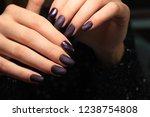 fashion nails manicure | Shutterstock . vector #1238754808