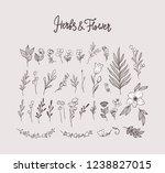 big set floral design elements  ... | Shutterstock .eps vector #1238827015
