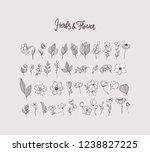 big set floral design elements  ... | Shutterstock .eps vector #1238827225