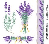 great set with lavender flowers  | Shutterstock .eps vector #123887962