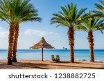 resting coastal area in eilat   ... | Shutterstock . vector #1238882725