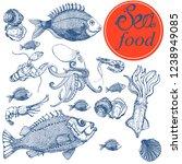 sea food  set  banner  vector | Shutterstock .eps vector #1238949085
