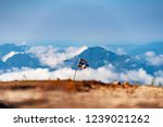thai national flag stand on a... | Shutterstock . vector #1239021262