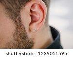 earring in the male ear.... | Shutterstock . vector #1239051595