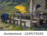 franz senn hutte  2 147 m asl ... | Shutterstock . vector #1239179245