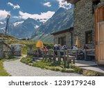 franz senn hutte  2 147 m asl ... | Shutterstock . vector #1239179248