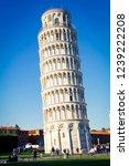 italian landmark   pisa leaning ... | Shutterstock . vector #1239222208
