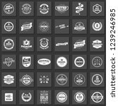 vintage retro vector logo for... | Shutterstock .eps vector #1239246985