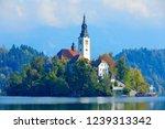 bled lake island  st martin... | Shutterstock . vector #1239313342