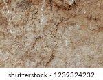 brown ground surface. mining... | Shutterstock . vector #1239324232
