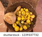 autumn harvest in the woven... | Shutterstock . vector #1239337732