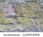 wall with the texture of...   Shutterstock . vector #1239353998