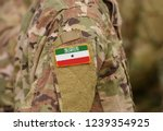 somaliland flag on soldiers arm ... | Shutterstock . vector #1239354925