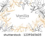 isolated vector on white...   Shutterstock .eps vector #1239365605