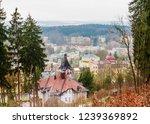 view of  marianske lazne spa ... | Shutterstock . vector #1239369892