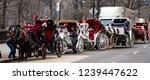 new york city  new york  ... | Shutterstock . vector #1239447622