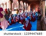 new dehli  india   february 19  ... | Shutterstock . vector #1239447685