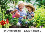 gardening with a kids.... | Shutterstock . vector #1239450052