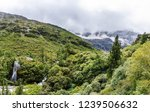 scene in daocheng yading... | Shutterstock . vector #1239506632