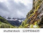 scene in daocheng yading... | Shutterstock . vector #1239506635