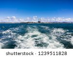leaving the coastline on a high ...   Shutterstock . vector #1239511828