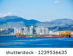 dali   china   oct 2018  aerial ... | Shutterstock . vector #1239536635