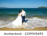 bride and groom at the beach ...   Shutterstock . vector #1239545695
