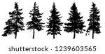 forest trees silhouette.... | Shutterstock .eps vector #1239603565
