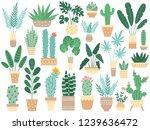 home plants in pots. nature...   Shutterstock .eps vector #1239636472